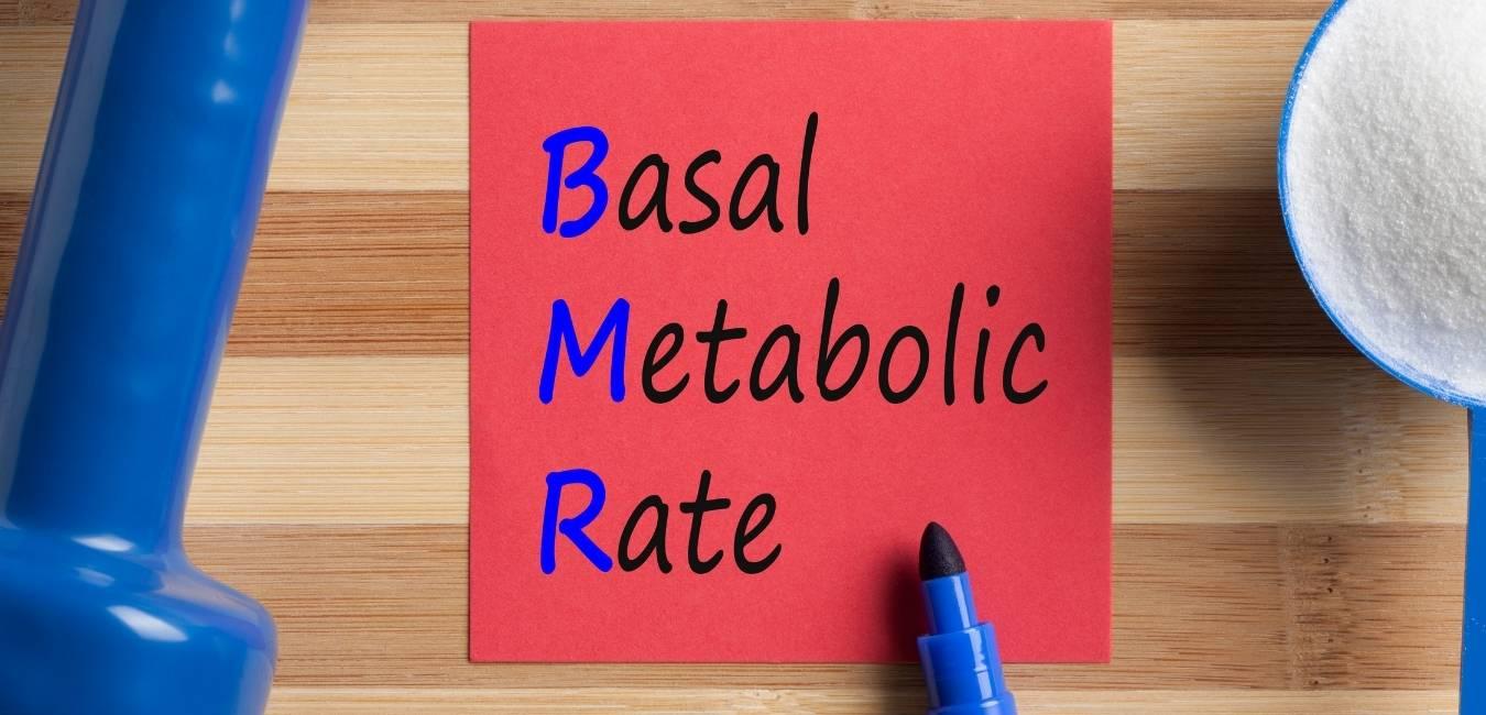 מתחילים תהליך חיטוב או הרזיה? בדקו מהו ה-BMR שלכם!